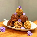 nut free, bliss balls, ray peat, healthy